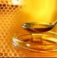 نحل العسل والمناعة المكتسبة