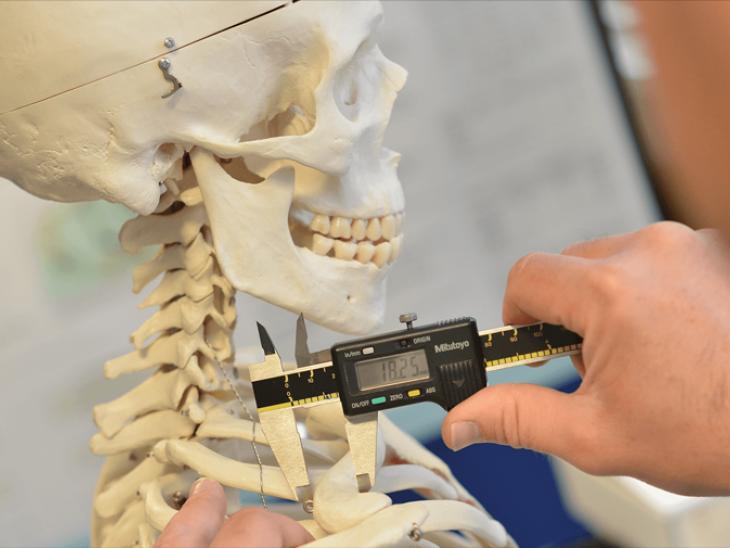 الهيكل العظمي و شرح كامل للدكتور بيتر اندرسون